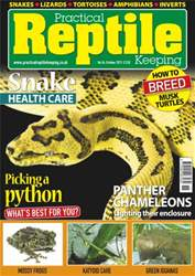 No.54 Picking a python issue No.54 Picking a python