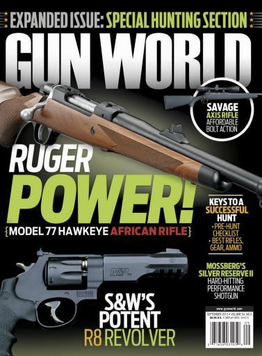 Gun World Preview