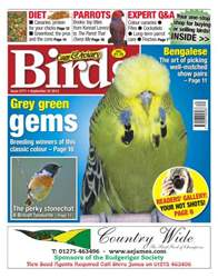 No.5771 Grey Green Gems issue No.5771 Grey Green Gems