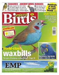 No.5772 World-class Waxbills issue No.5772 World-class Waxbills