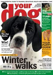 Your Dog Magazine November 2013 issue Your Dog Magazine November 2013