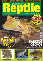 No.55 Meet the Pacman Frog issue No.55 Meet the Pacman Frog