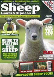 No.1 Starting with Sheep issue No.1 Starting with Sheep