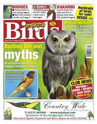 No.5776 Busting the Owl Myths issue No.5776 Busting the Owl Myths