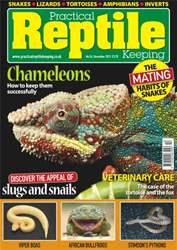 No.56 How to Keep Chameleons issue No.56 How to Keep Chameleons