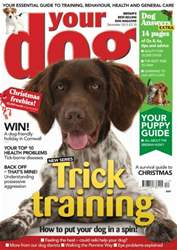 Your Dog Magazine December 2013 issue Your Dog Magazine December 2013