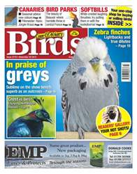 No.5779 In Praise of Greys issue No.5779 In Praise of Greys