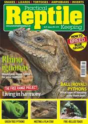 No.57 Rhino iguanas issue No.57 Rhino iguanas