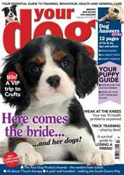 Your Dog Magazine February 2014 issue Your Dog Magazine February 2014