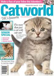 Catworld Issue 431 issue Catworld Issue 431