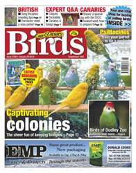 No.5788 Captivating colonies issue No.5788 Captivating colonies