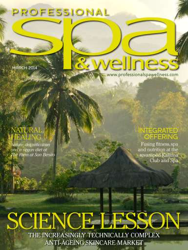 World Spa & Wellness Preview