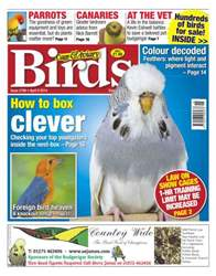 No.5798 How to Box Clever issue No.5798 How to Box Clever