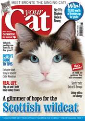 Your Cat Magazine May 2014 issue Your Cat Magazine May 2014