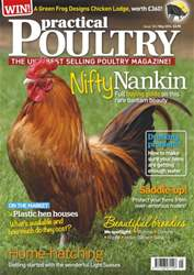 No.124 Nifty Nankin issue No.124 Nifty Nankin