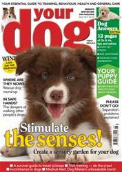 Your Dog Magazine June 2014 issue Your Dog Magazine June 2014