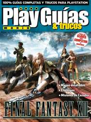 Final Fantasy XIII issue Final Fantasy XIII