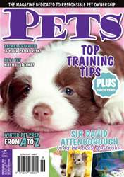 Pets Issue#36 May/Jun 2014 issue Pets Issue#36 May/Jun 2014