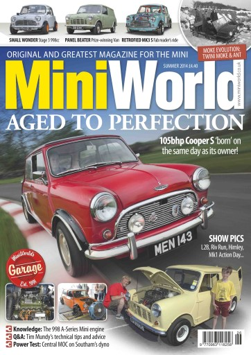 Mini World Preview