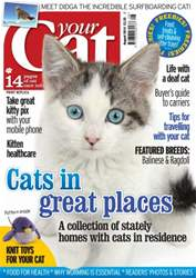 Your Cat Magazine August 2014 issue Your Cat Magazine August 2014
