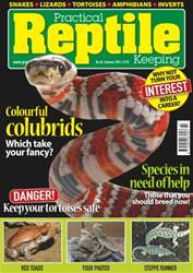 No.65 Colourful Colubrids issue No.65 Colourful Colubrids