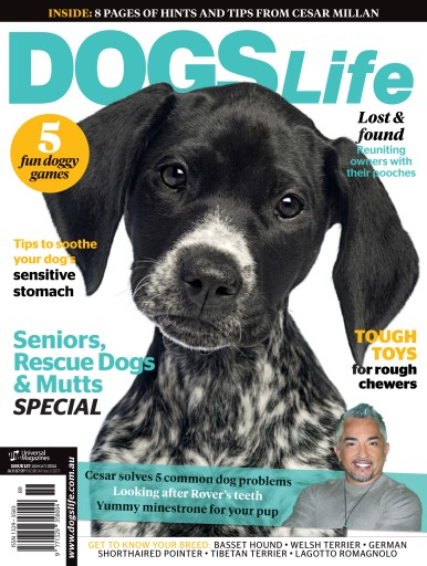 Dogs Life Digital Issue