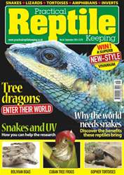 No.66 Tree Dragons - Enter their world issue No.66 Tree Dragons - Enter their world