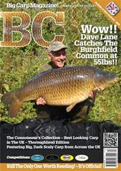Big Carp 217 issue Big Carp 217