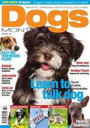 Dogs Monthly November 14 issue Dogs Monthly November 14