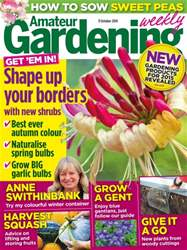 11th October 2014 issue 11th October 2014