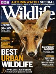 BBC Wildlife Magazine Magazine Cover