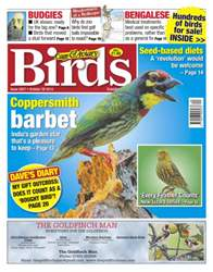 No.5827 Coppersmith Barbet issue No.5827 Coppersmith Barbet