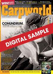 Digital Sample issue Digital Sample