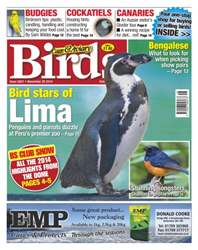 No.5831 Bird Stars of Lima issue No.5831 Bird Stars of Lima