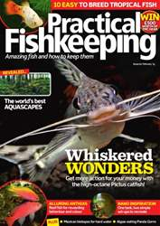Practical Fishkeeping Magazine Cover
