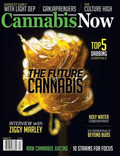 Cannabis Now Digital Issue