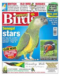No.5839 Senegal Stars issue No.5839 Senegal Stars
