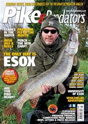 208 issue 208