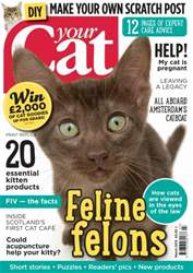 Your Cat Magazine March 2015 issue Your Cat Magazine March 2015