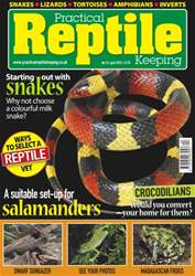 No.73 A Suitable Set-Up for Salamanders issue No.73 A Suitable Set-Up for Salamanders