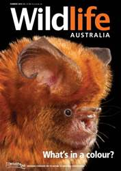 Wildlife Australia Magazine Cover