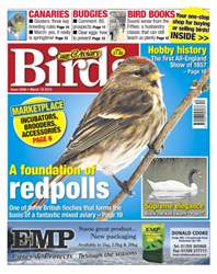 No.5846 A Foundation of Redpolls issue No.5846 A Foundation of Redpolls