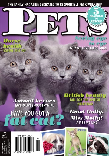 Pets Digital Issue